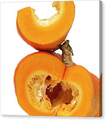 Pumpkins Canvas Print by Bernard Jaubert