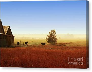 Rawdon Everyday Life Canvas Print by Aimelle