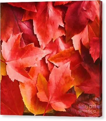 Red Leaves Canvas Print by Veikko Suikkanen
