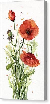Red Poppies Watercolor Canvas Print by Olga Shvartsur