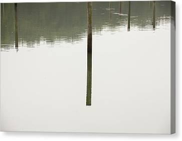 Reflecting Poles Canvas Print by Karol Livote