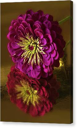 Reflections Canvas Print by Don Spenner