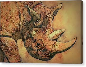 Rhino 5 Canvas Print by Jack Zulli