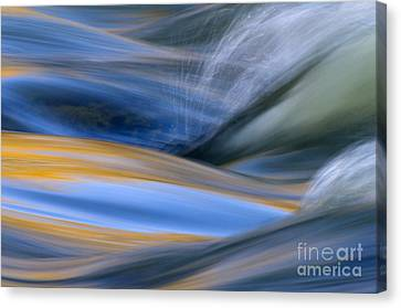 River Canvas Print by Silke Magino