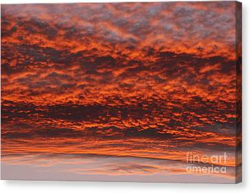 Rosy Sky Canvas Print by Michal Boubin