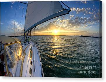 Sailing Sunset Charleston Sc Beneteau 49 Canvas Print by Dustin K Ryan