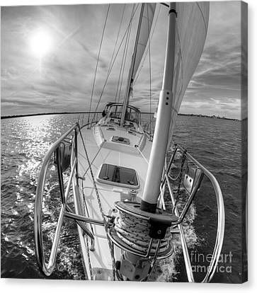 Sailing Yacht Fate Beneteau 49 Black And White Canvas Print by Dustin K Ryan