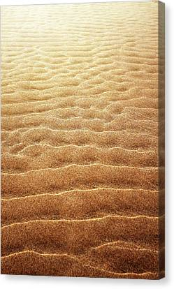 Sand Background Canvas Print by Carlos Caetano