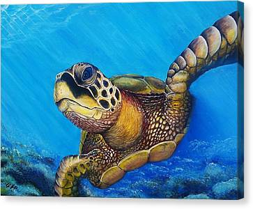 Sea Turtle . Canvas Print by Ryan Alsup