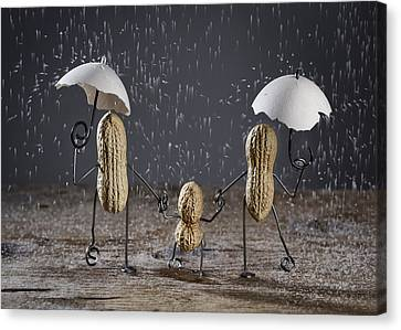 Simple Things - Taking A Walk Canvas Print by Nailia Schwarz