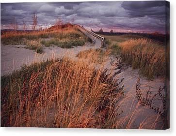 Sleeping Bear Dunes National Lakeshore Canvas Print by Melissa Farlow