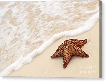 Starfish And Ocean Wave Canvas Print by Elena Elisseeva