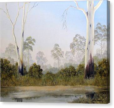 Still Creek Canvas Print by John Cocoris