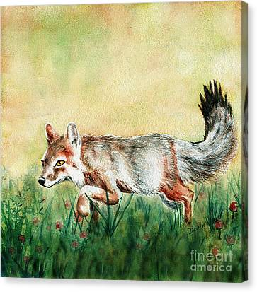 Summer Fox Canvas Print by Antony Galbraith