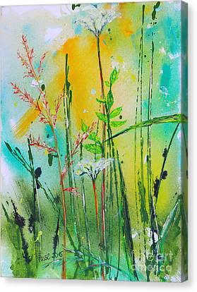 Summer Meadow Canvas Print by Jutta Maria Pusl