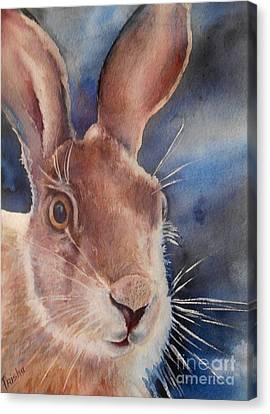 Surprise Canvas Print by Patricia Pushaw