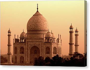 Taj Mahal Canvas Print by Aidan Moran