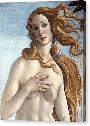 The Birth Of Venus Canvas Print by Sandro Botticelli