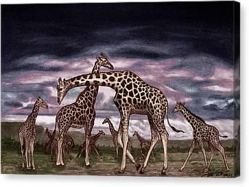 The Herd Canvas Print by Peter Piatt