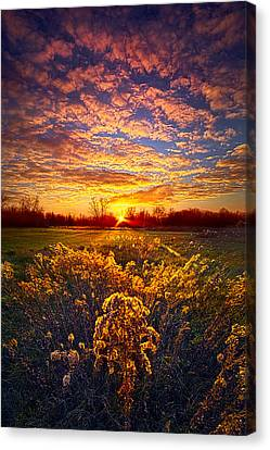 The Love That Lights My Way Canvas Print by Phil Koch