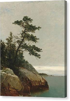 The Old Pine Darien Connecticut Canvas Print by John Frederick Kensett