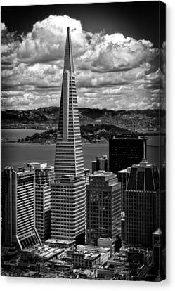 The Transamerica Building Canvas Print by Mountain Dreams