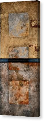 Three Squared Series Of Two Canvas Print by Carol Leigh