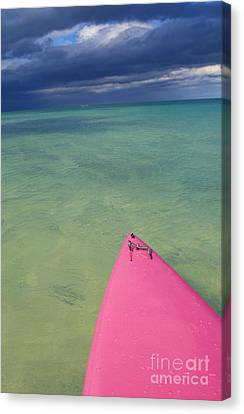 Tip Of Pink Kayak Canvas Print by David Cornwell/First Light Pictures, Inc - Printscapes