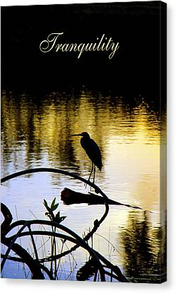 Tropical Tranquility Canvas Print by Olivia Novak