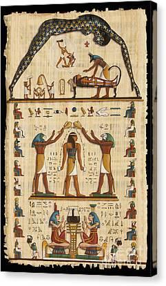 Twokupamun Papyrus Canvas Print by Richard Deurer