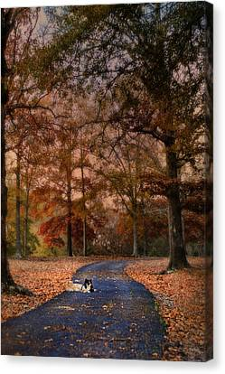 Waiting Canvas Print by Jai Johnson