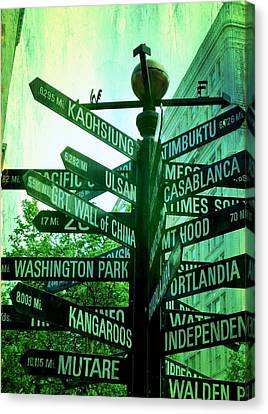 Where To Go Canvas Print by Cathie Tyler