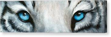 Whos Watching Who...white Tiger Canvas Print by Darlene Green