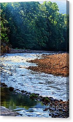 Williams River After The Flood Canvas Print by Thomas R Fletcher