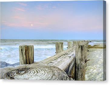 Wooded Horizon Canvas Print by Drew Castelhano