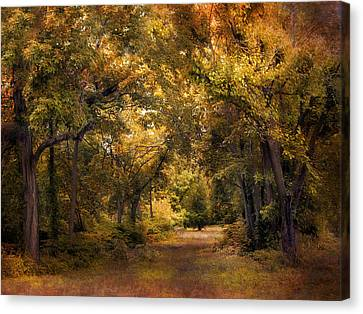 Woodland Clearing Canvas Print by Jessica Jenney