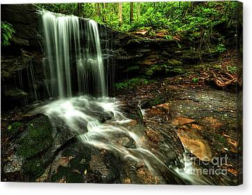 Lin Camp Branch Waterfall Canvas Print by Thomas R Fletcher