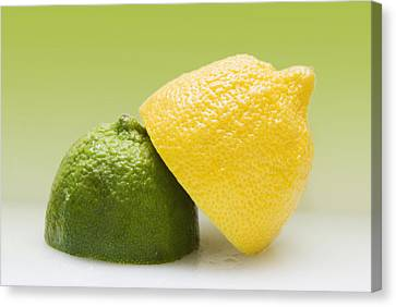 12 Organic Lemon And 12 Lime Canvas Print by Marlene Ford
