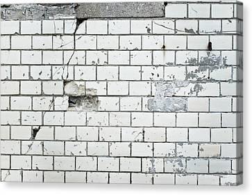 Damaged Wall Canvas Print by Tom Gowanlock