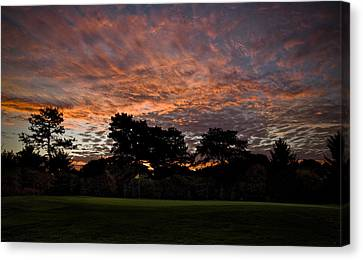 16 Green Dawn Canvas Print by Edwin Voorhees