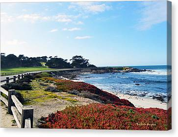 17 Mile Drive Shore Line Canvas Print by Barbara Snyder