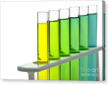 Laboratory Test Tubes In Science Research Lab Canvas Print by Olivier Le Queinec