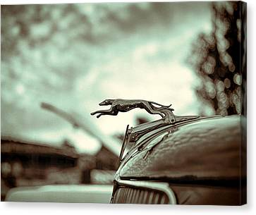 1934 Ford Hood Ornament Canvas Print by Jon Woodhams