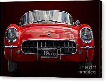 1955 Corvette Canvas Print by Dennis Hedberg