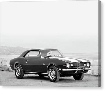 1968 Camaro Z28 Canvas Print by Mark Rogan