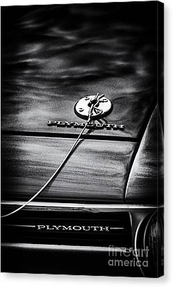 1970 Plymouth Canvas Print by Tim Gainey