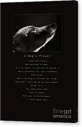A Dog's Prayer Canvas Print by Angela Rath