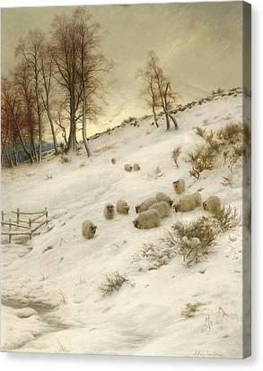 A Flock Of Sheep In A Snowstorm Canvas Print by Joseph Farquharson