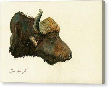 African Buffalo Watercolor Painting Canvas Print by Juan  Bosco