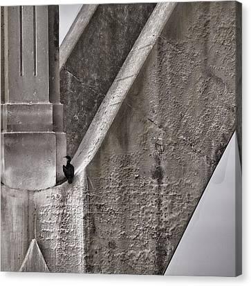 Architectural Detail Canvas Print by Carol Leigh